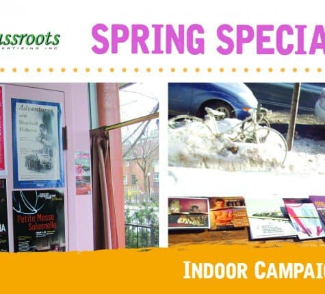Spring Special_Indoor_2017_forweb