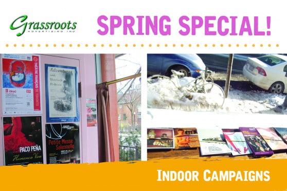 Spring Special_Indoor_2017_forweb