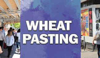 wheat pasting