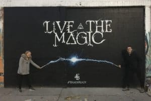 Fantastic Beasts Interactive Wall Mural